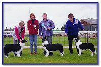 Res Best Puppy In Show, BC Club of GB 2004