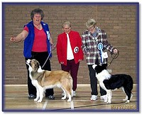 Res Best Puppy Dog - East Anglian BC Club