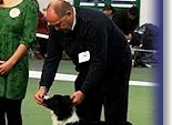 Judging at Border Collie Club of GB in 2013