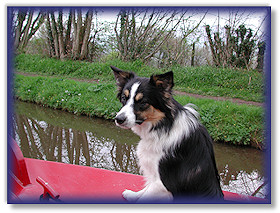 Ebba on the narrow boat