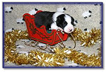 ...in a one-pup open sleigh!