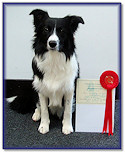 Rex at 6 Months: 1st Place, Intermediate Test