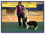 Zac Best Puppy In Show WofE Ch Show